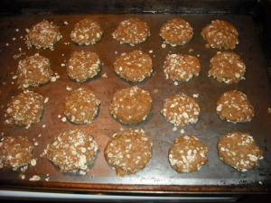Finished protein and flax cookies